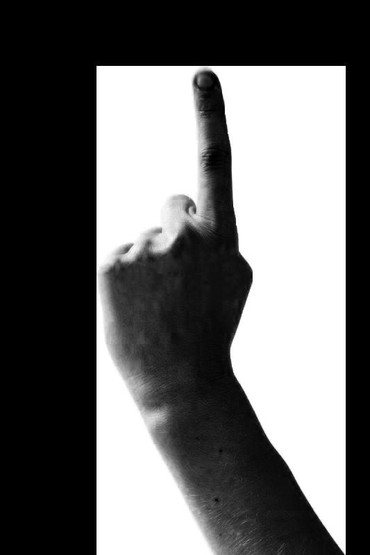 Tegnsprogstolke er glade for ordstyrere